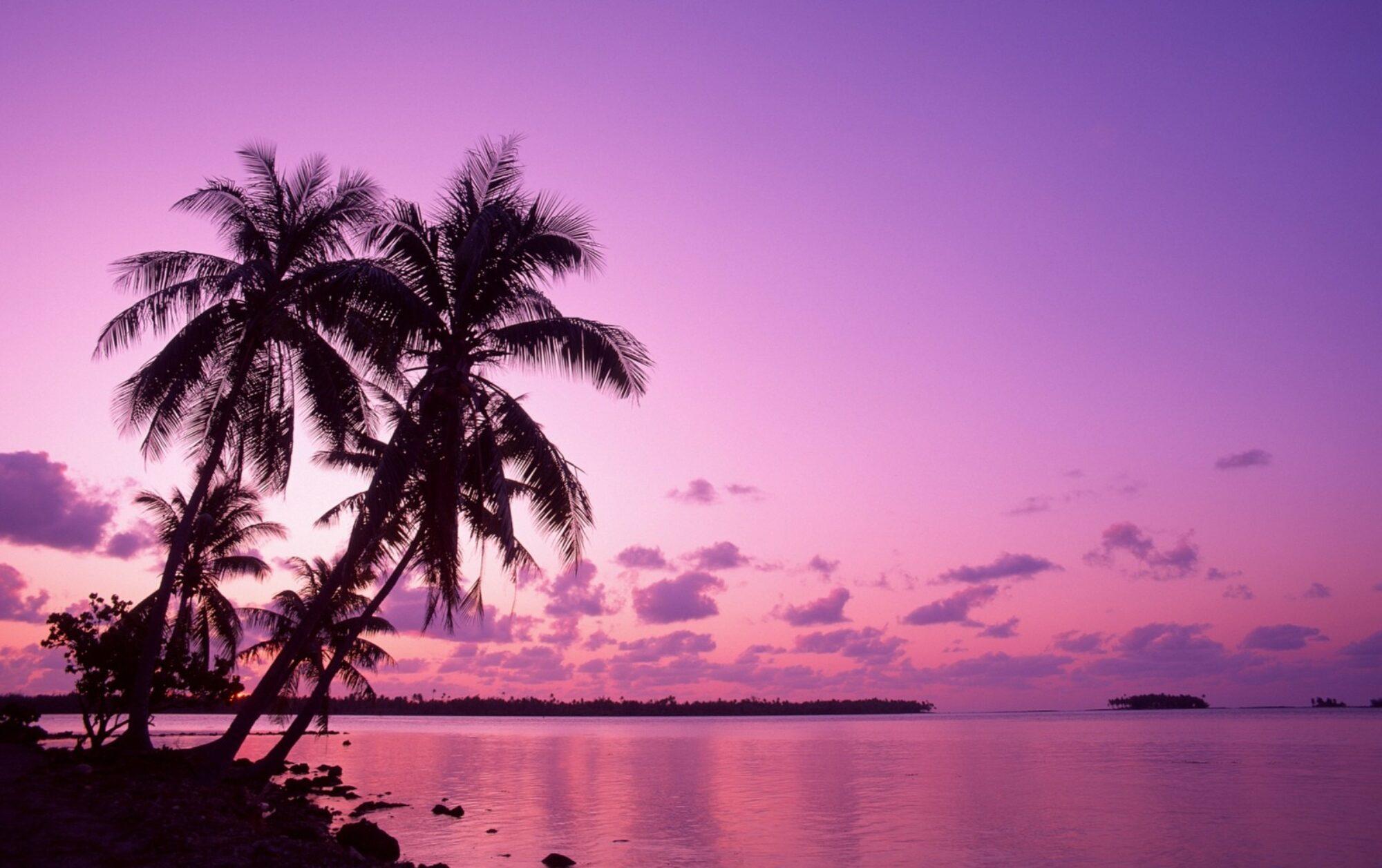Willkommen bei Karibik Tropical